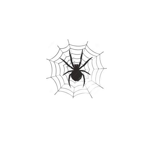 een werkvoorbereider fungeert als een spin in een web_ a spider in a web